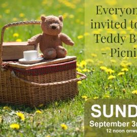 Teddy Bear Picnic on 3rd September 2017